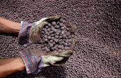 Iron ore seen slumping for years after hitting February peak