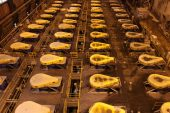 Goldman bullish on commodities amid mining's accelerating rally