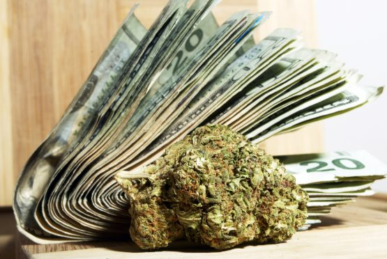 It is expected that the US market will be spending more money on cannabis than fizzy soft drinks by 2030. Picture: Shutterstock.