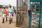 Harmony Gold to resume reduced operations during coronavirus lockdown