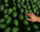 Avocado prices are surging — for now