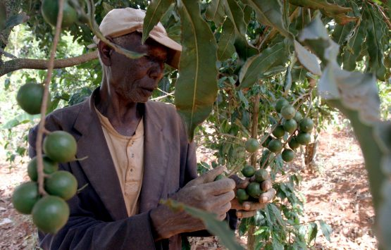 African countries also need to invest in infrastructure in to make agriculture more efficient and for products to easily reach markets. Picture: Supplied
