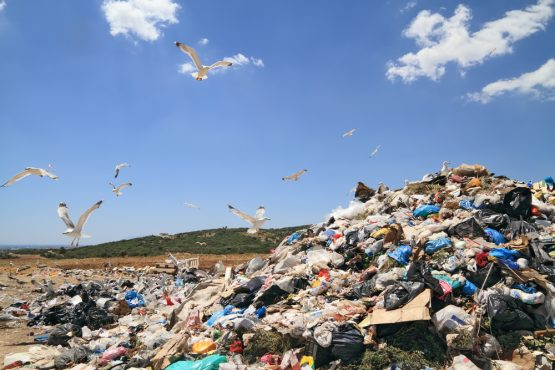 The amount of materials the world uses has tripled since 1970 and could double again by 2050 if no action is taken, the United Nations estimates. Picture: Shutterstock