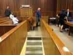 Tigon: Milne plea and sentence agreement questioned