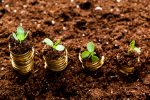 The growing venture capital market, is it for you?