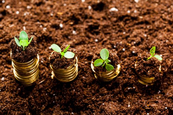 Getting real growth in the local investment environment has been a challenge. Picture: Shutterstock