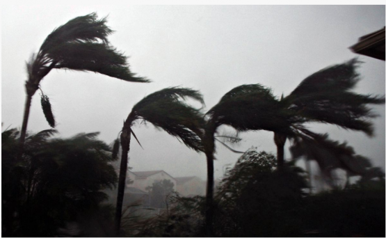 If the storm reaches Mozambique it would be the most severe tropical cyclone to strike the island since Jokwe in 2008 a cyclone that killed 13 people and displaced thousands more