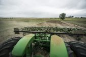 Farmers cut back on multi-peril crop insurance