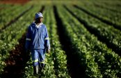 Land reform experts tell beneficiaries to put CPAs in order