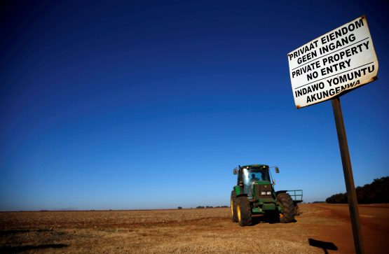 Government is contemplating a mass custodial taking of land, along the lines of mineral and water rights. Picture: Siphiwe Sibeko, Reuters