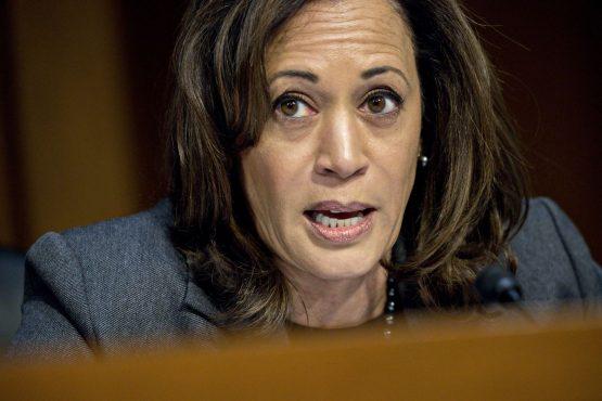 Senator Kamala Harris. Image: Bloomberg