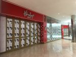 Hamleys SA in business rescue as malls face more headwinds