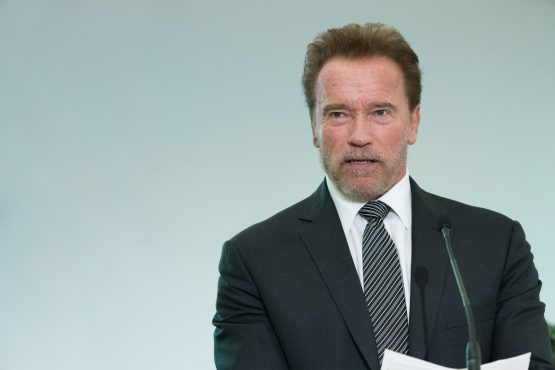 Schwarzenegger was chatting with fans at the Arnold Classic Africa in Johannesburg when he was kicked from behind. Picture: Shutterstock