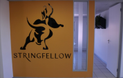 Stringfellow investors left bewildered