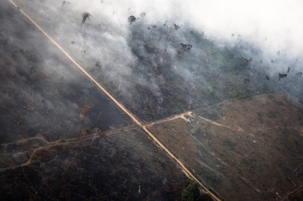 Brazilian states ask for military help as Amazon fires rage