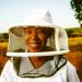 SME of the week: Beekeeper Native Nosi