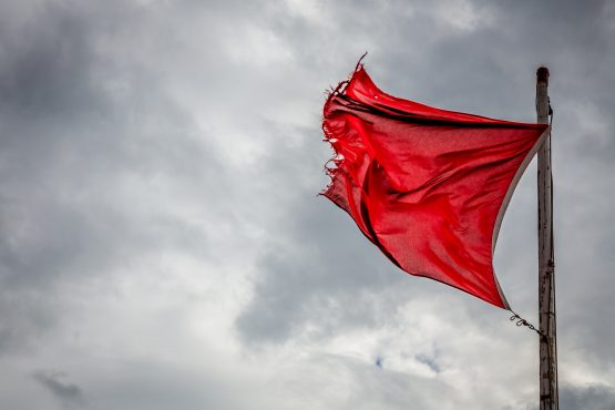 The FSCA has highlighted one red flag indicating that people's money 'may be at risk', but there are others, including claims of returns of up to 2000% in a year. Image: Shutterstock