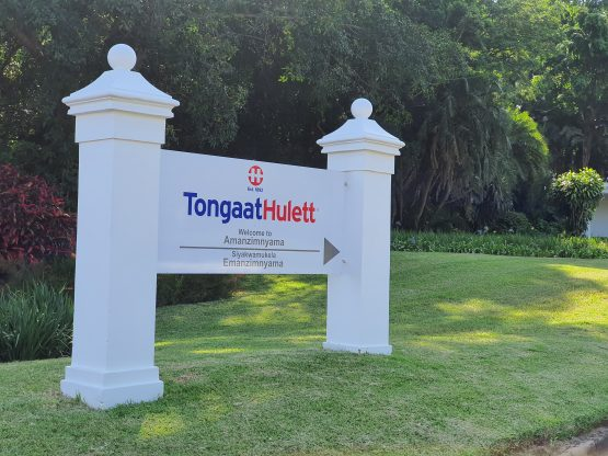 Debt-laden Tongaat Hulett has sold its starch business to a Barloworld subsidiary for R5.3bn. The cash sale will bring down Tongaat's debt significantly. Image: Suren Naidoo, Moneyweb