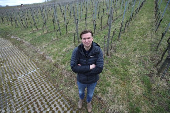 Winemaker Jens Zimmerle stands at the vineyard where he harvested the ice wine grapes during the 2019 picking in Korb near Stuttgart.