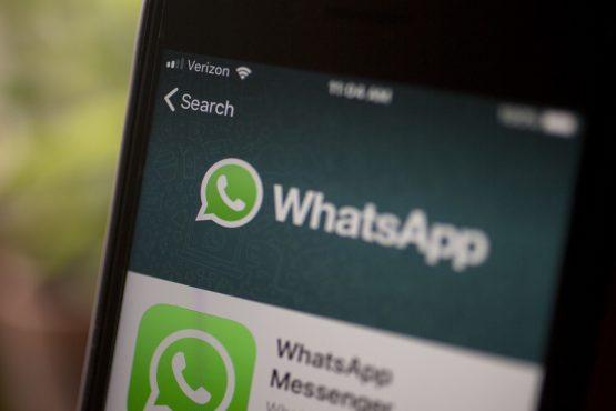 WhatsApp service in SA goes global in WHO virus fight - Moneyweb.co.za