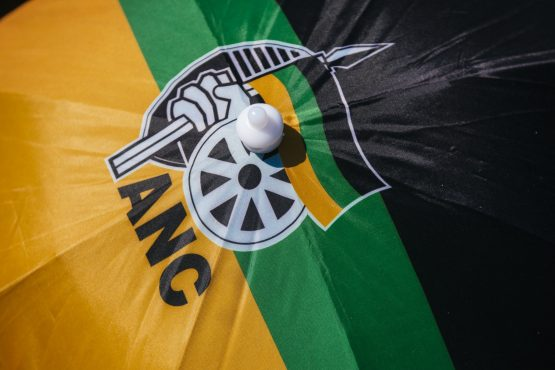 Like the antagonist in a great work of fiction, the ANC contains within itself the seed of its own downfall, says the author. Image: Waldo Swiegers, Bloomberg