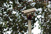 Vumacam wins 'spy camera' court case against city