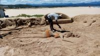 Plett's small businesses hit by beach closures
