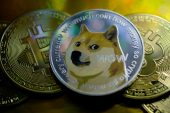 Elon Musk says he'll support sales by top Dogecoin holders