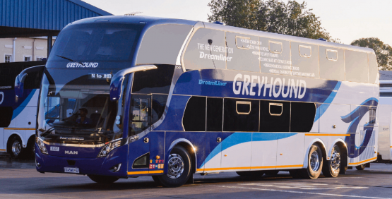Greyhound, which has been in business since 1984, confirmed on Wednesday that its operations will cease by Valentine's Day due to Covid-19's impact. Image: Greyhound website