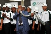 Commodity boom sees Royal Bafokeng Platinum deliver stellar 2020 results
