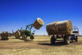 SA agriculture-business mood index jumps to a record