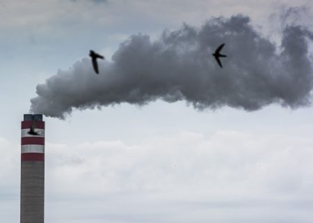 SA presidential body recommends lower emissions target