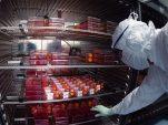 Sanofi ends development of Covid messenger-RNA vaccine