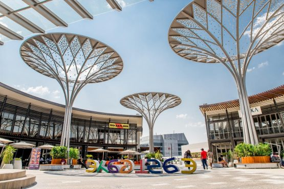 The innovative new 'solar trees' at Eastgate Shopping Centre in Johannesburg. Image Supplied