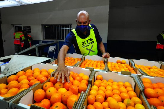 Creating a set of classification and grading rules for each agricultural product has proved cumbersome and added to costs of production. Image: Getty Images